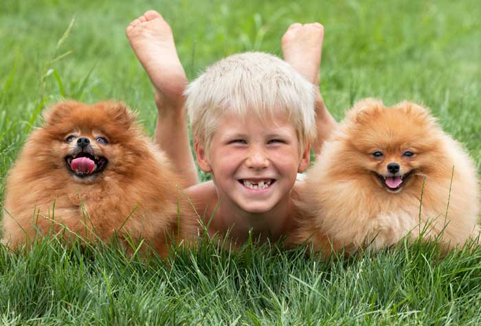 Kids and Pets – is it a good idea or a bad one?