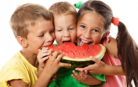 Contributor to Doctor Dina Health Advice for Kids Contributor to Doctor Dina Health Advice for KidsContributor to Doctor Dina Health Advice for Kids - Healthy food for Toddlers
