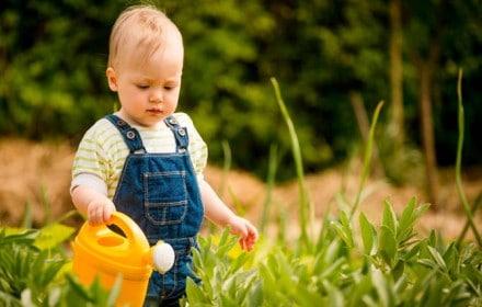 Doctor Dina Health Advice for Kids - Doctor Dina Health Advice for Kids - Garden Safety for Toddlers