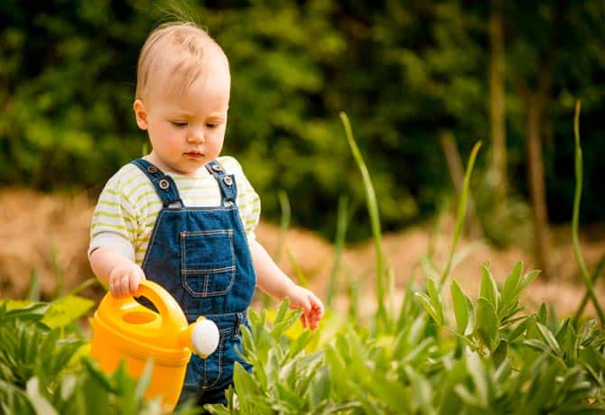 Garden Safety for Toddlers