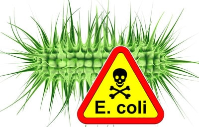 Doctor Dina Health Advice for Kids- E coli