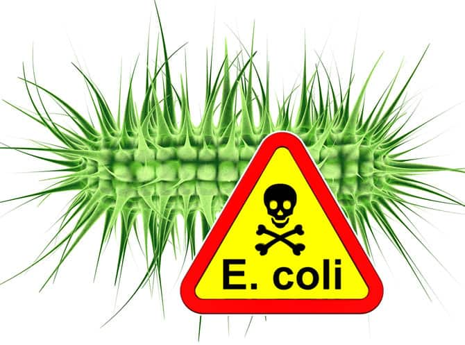 Warning – E coli Outbreak In Canada