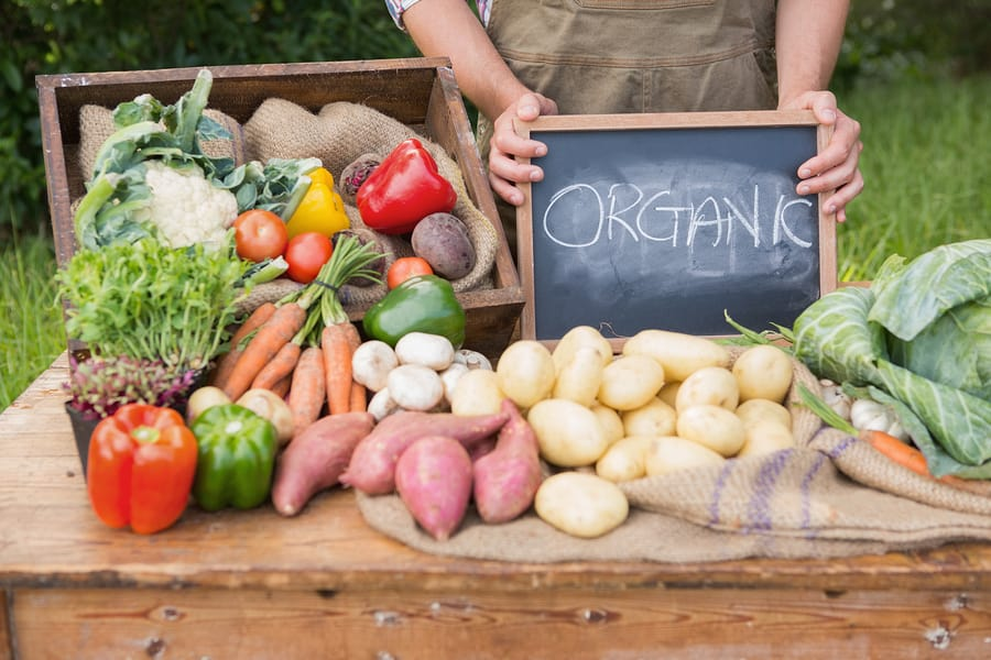 Is Organic Food Worth the Hype and Expense?