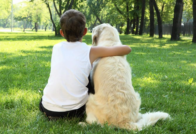 6 Reasons to Own a Dog