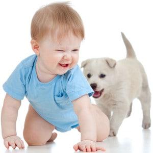 dr-dina-kids-and-pets