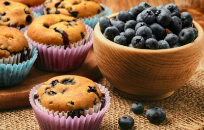 Dr Dina Kulik Kids Health - blueberry chia muffins